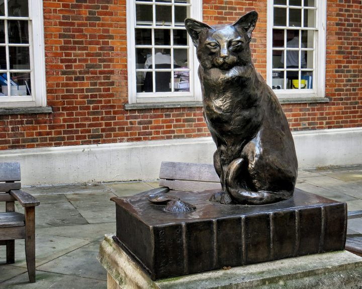 Hodge, Samuel Johnson's cat, in London (photo by David Skinner/Flickr)