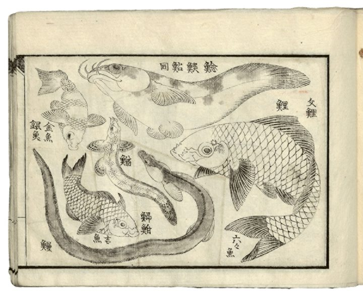 """Katsushika Hokusai, from """"Drawings for a Three-Volume Picture Book"""" (c.1823-33) (all photos © Museum of Fine Arts, Boston unless otherwise noted)"""