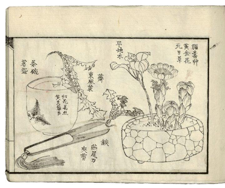 hokusaiflowers