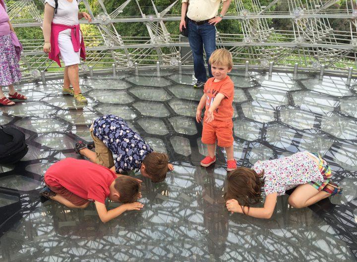Children looking through the floor