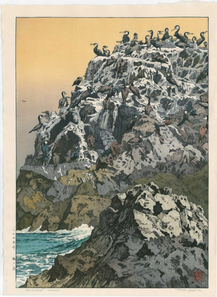 toshi-yoshida-cormorant-island-1975