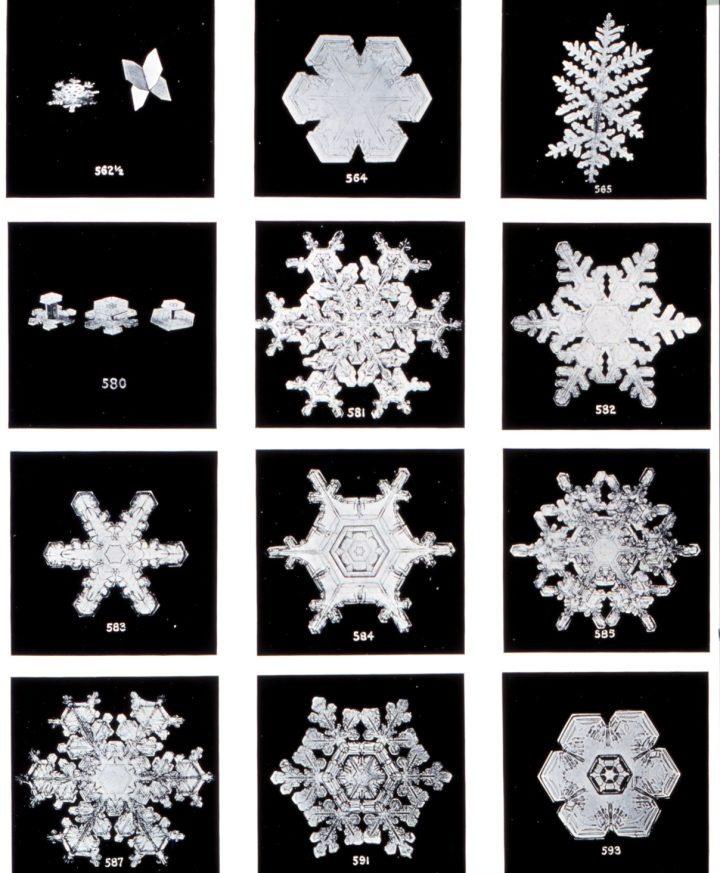 the first snowflake photographs