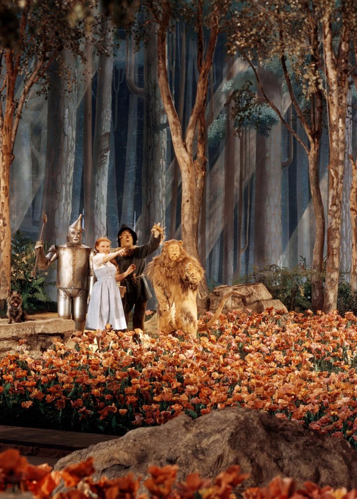 Scene from 'The Wizard of Oz' (1939) (courtesy the Kobal Collection/MGM, via Regan Arts)