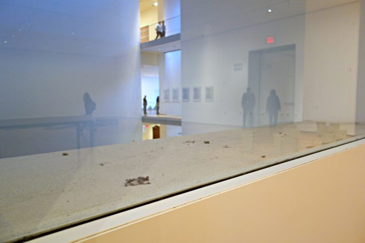 Dust Gathering (photo by the author for Hyperallergic)