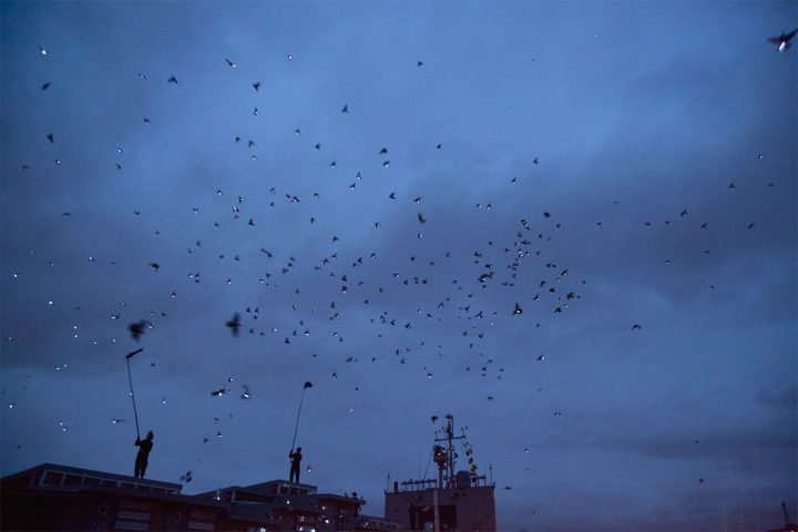"Duke Riley, ""Fly By Night"" at the Brooklyn Navy Yard (photo Jake Silby/Hyperallergic)"