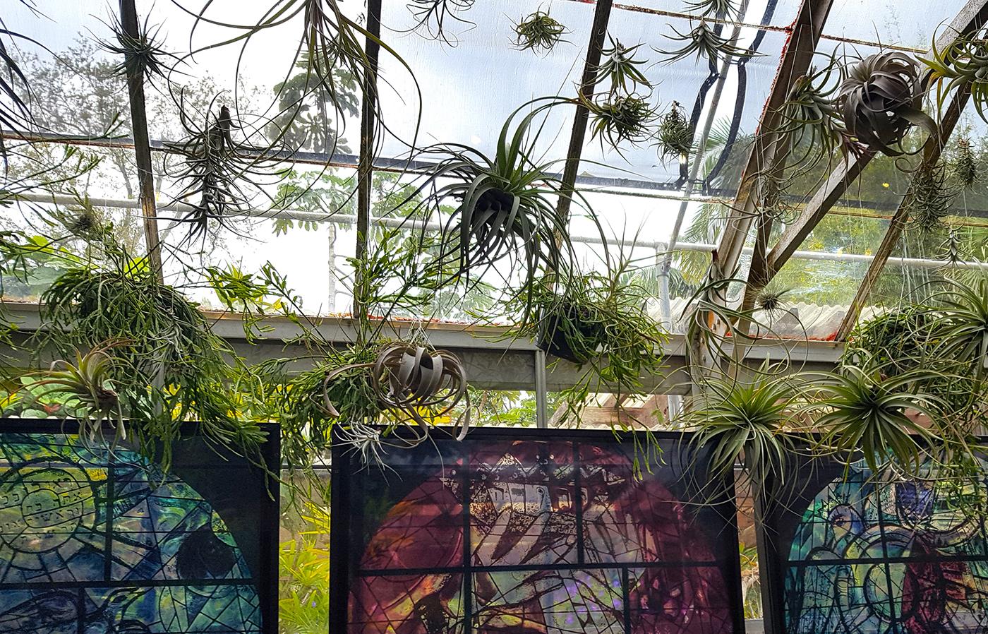 A Botanical Garden Blooms with Chagall Artes & contextos Selby11