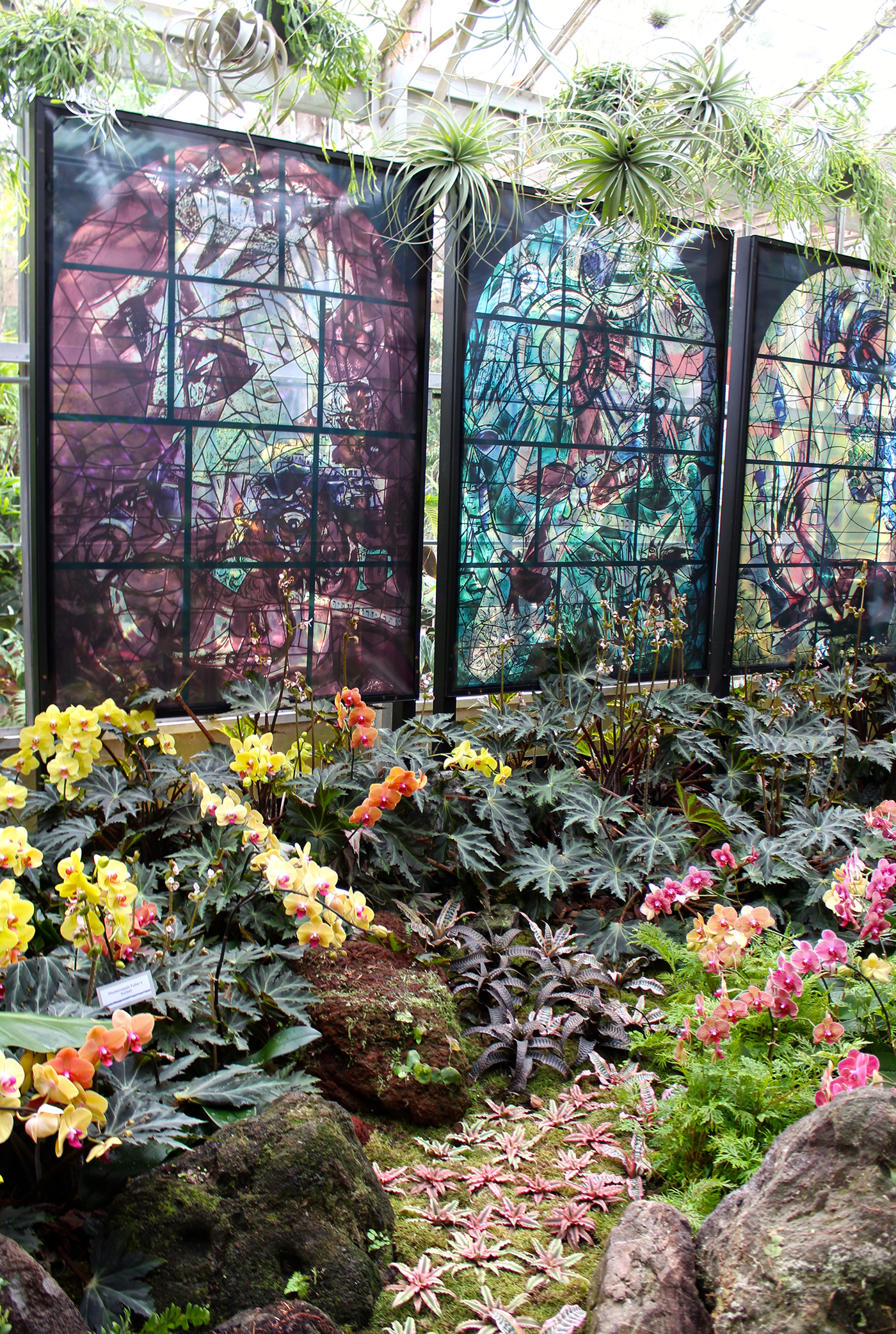 A Botanical Garden Blooms with Chagall Artes & contextos Selby3