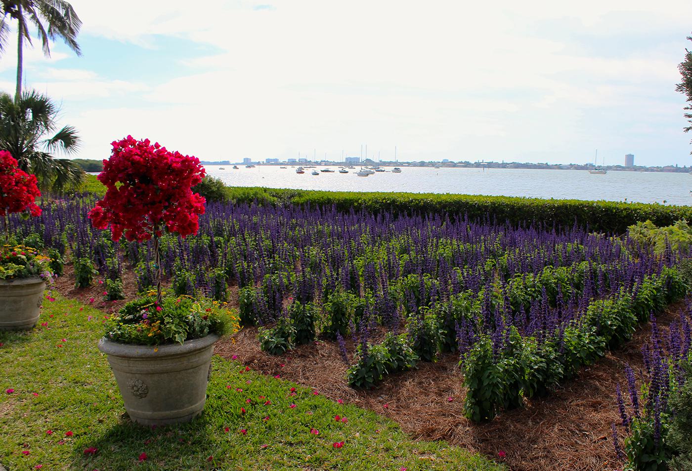 A Botanical Garden Blooms with Chagall Artes & contextos Selby4