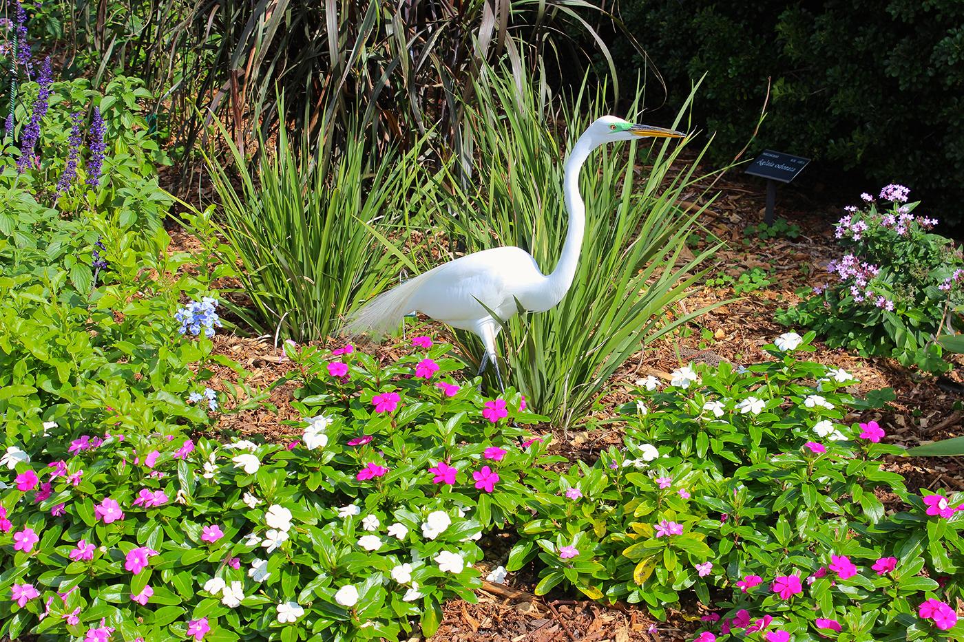 A Botanical Garden Blooms with Chagall Artes & contextos Selby6