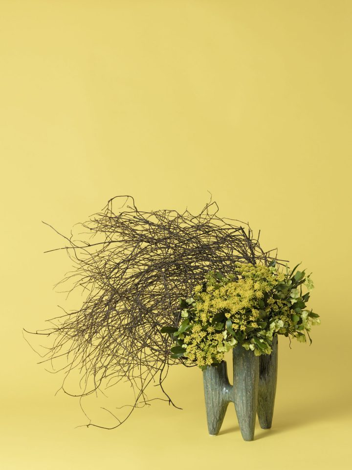 Bouquets Highlight Plants Used to Control Women's Reproductive Health