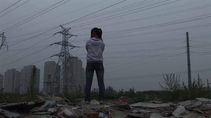 """""""When the Bough Breaks 危巢"""" (2013) (courtesy Ji Dan 季丹)"""