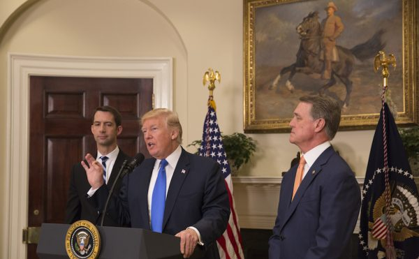 President Trump speaking before an equestrian portrait painting of President Theodore Roosevelt (official White House photo by Andrea Hanks, via Flickr)