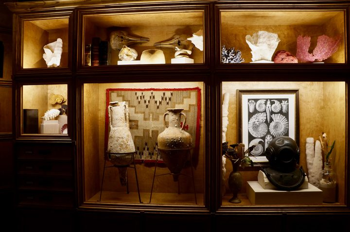 <em>Cabinet of Curiosities</em>