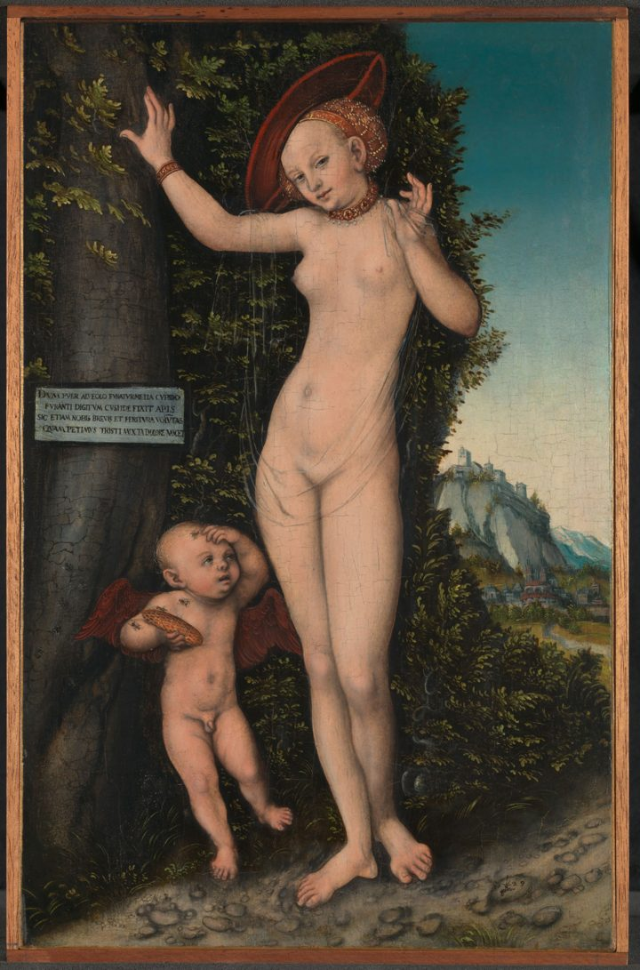 """Lucas Cranach the Elder, """"Venus and Cupid"""" (1529), oil on beech, 38.1 × 23.5 cm, The National Gallery, London (© The National Gallery, London)"""