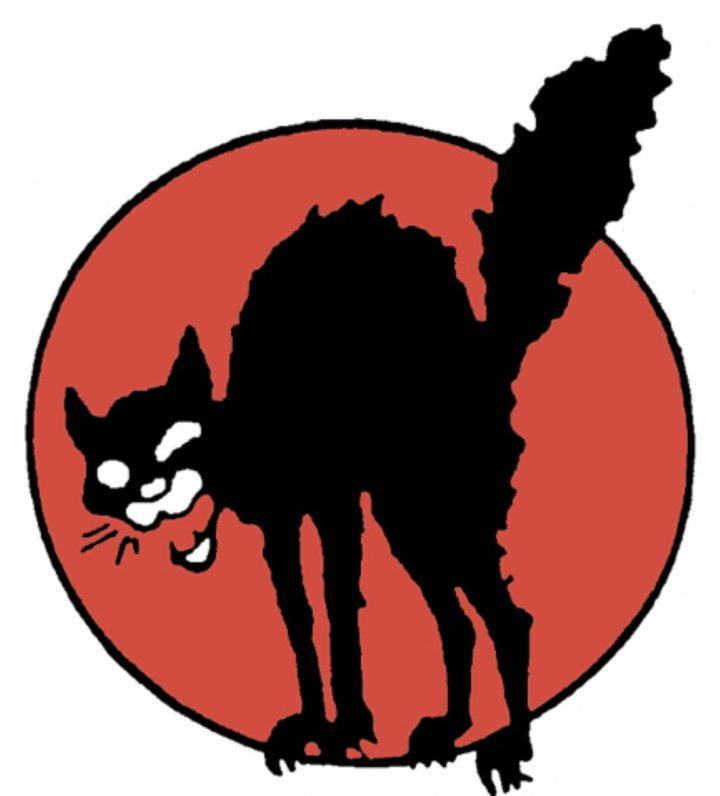 2 br Sabo Cat