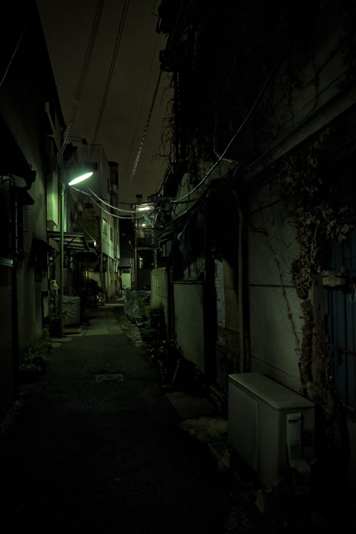 HASHIMOTO photo 7 96 dpi