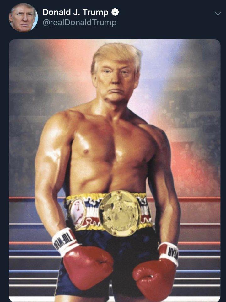 Image of Trump as Rocky Balboa