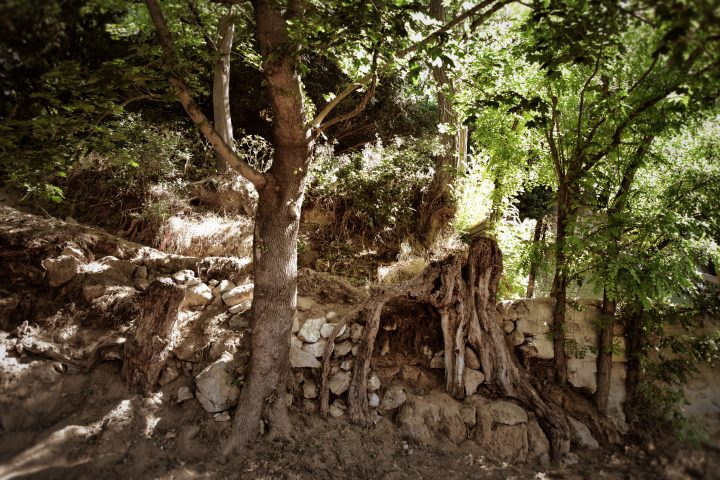 A encosta Auvers-sur-Oise em 30 de maio 30, de 2020 (©arthénon)