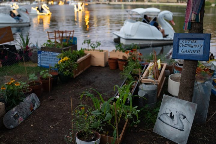 A Community Garden With Radical Potential Blossoms in Los Angeles