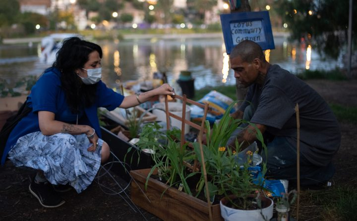 """LOS ANGELES — Ayman Ahmed, who lives in a tent in Los Angeles's Echo Park, needed his roses to dwell. He had planted the small rose mattress — """"my babies,"""" he referred to as them — in the neighborhood backyard just a few weeks earlier than, a painted white cross staked in the soil."""