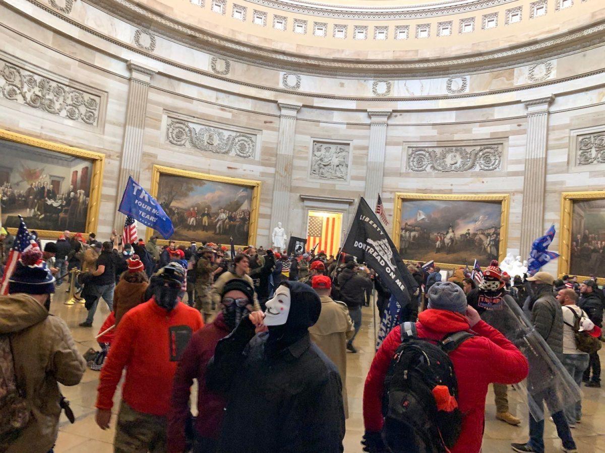 La rotonda di Capitol Hill invasa dai protestanti pro-Trump (Fonte: Hyperallergic)