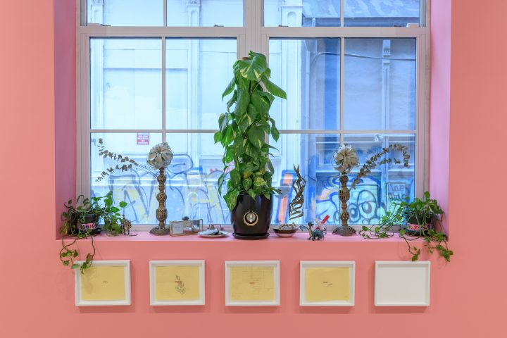 Laying Down Roots: Adjua Gargi Nzinga Greaves's Radical, Botanical Future