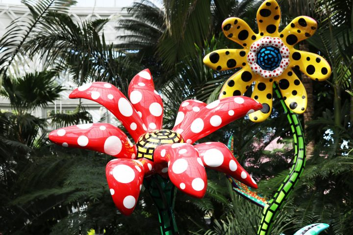 Dots for Days: Kusama Blooms at the New York Botanical Garden