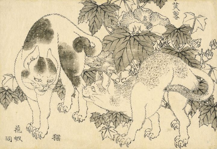 Over 100 Unpublished Hokusai Drawings Resurface in New Exhibition