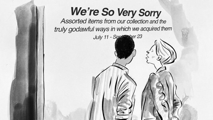 The Museum of Apologies